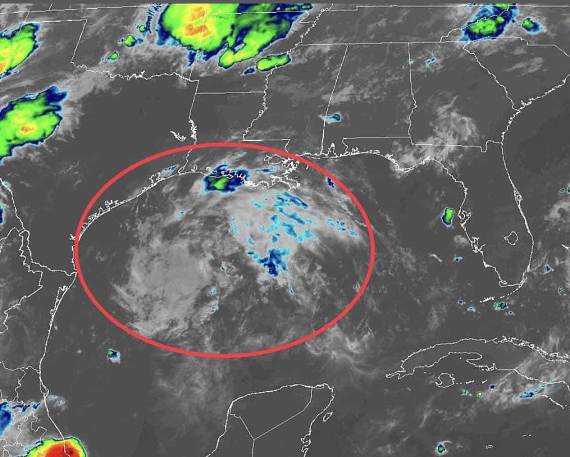 Gulf Disturbance   August 23, 2019