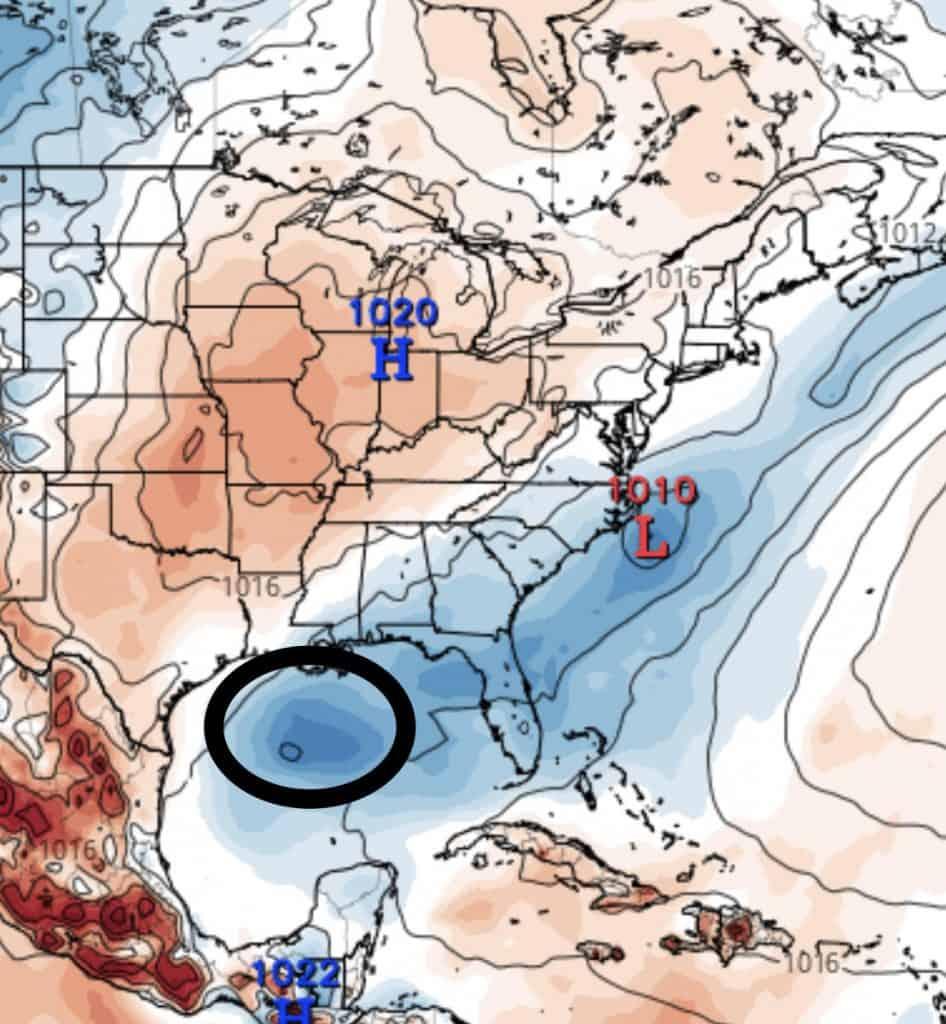 Gulf of Mexico disturbance, 7/24/2019