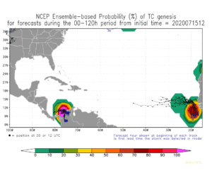 NCEP Ensemble-based Probability (%) of TC genesis