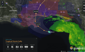 Sally - Riskpulse