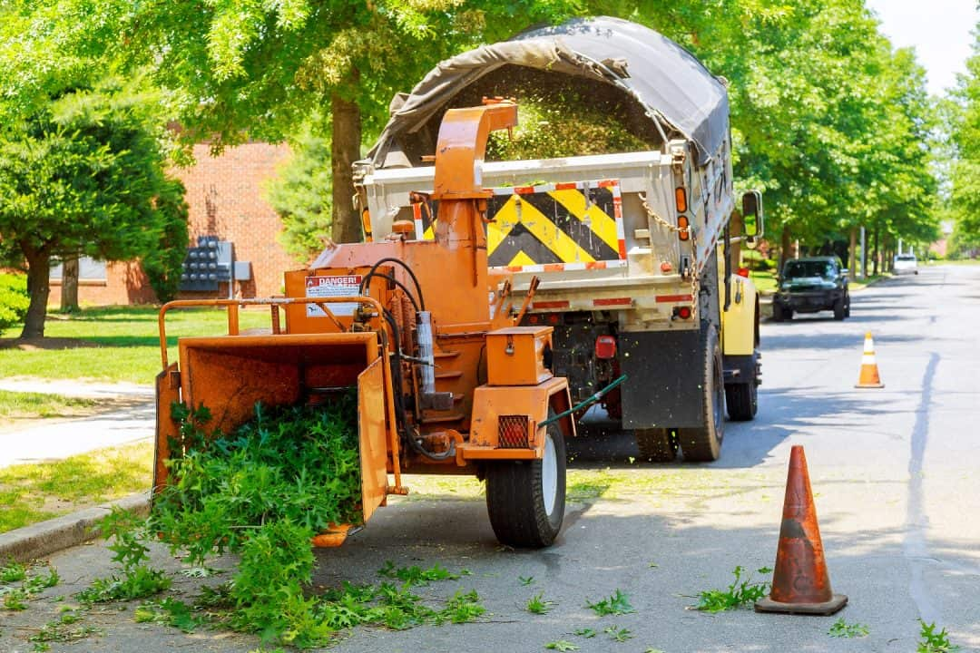 Who do I call if I need to remove a tree from my property? | Tower Hill Insurance